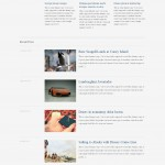 pulse is a premium wordpress magazine  theme