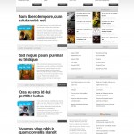 the source is a premium wordpress magazine  theme